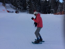 Raquettes/sneeuwwandelen